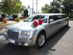 250 x 188 mylimo silver 300c
